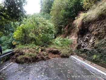 Maltempo a Biella, possibili sospensioni dell'acqua a Pavignano e Chiavazza FOTO - newsbiella.it