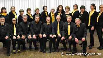 Hilpoltsteiner Vokal-Ensemble VoiceConnexion ist zurück - Nordbayern.de