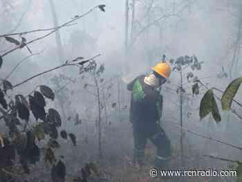 Incendio forestal en Nimaima (Cundinamarca): urgen apoyo aéreo para extinguirlo - RCN Radio