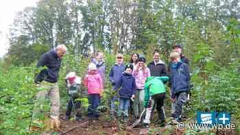 Kirchenwäldchen in Ennepetal Voerde neu bepflanzt - WP News