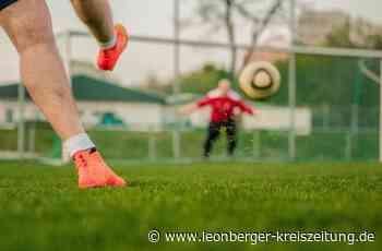 Fußball in Ditzingen: Mit zwei späten Treffern zum ersten Dreier - Leonberger Kreiszeitung