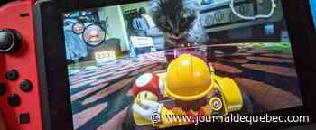 Mario Kart Live: Home Circuit, c'est plus qu'une voiture téléguidée [CRITIQUE]