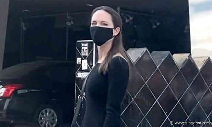 Angelina Jolie Crosses Paths with Animal Rights Activists While Shopping in WeHo