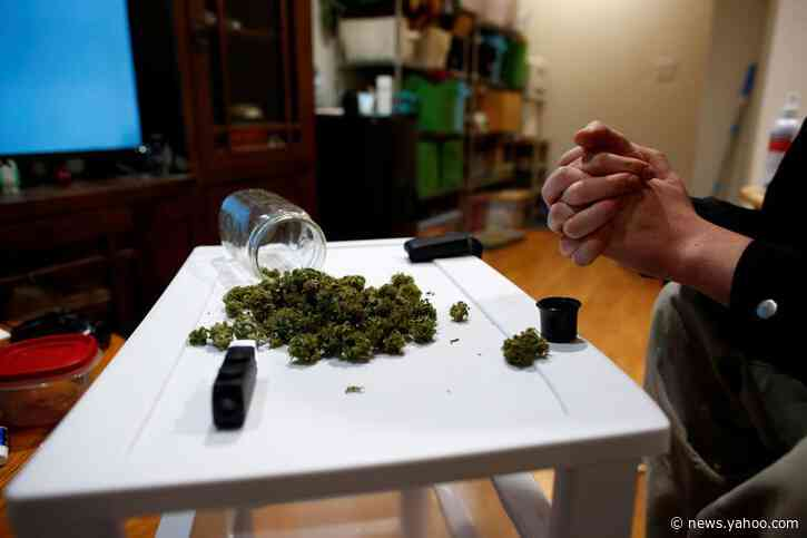 Montana federal prosecutor warns of dangers of pot legalization ahead of vote