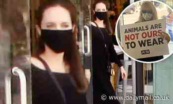 Angelina Jolie encounters an animal rights protest in West Hollywood while shopping with her son Pax