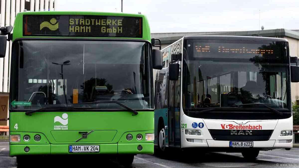 Am Dienstag schon wieder Warnstreik bei Stadtwerken Hamm: Nicht nur Buslinien betroffen - wa.de