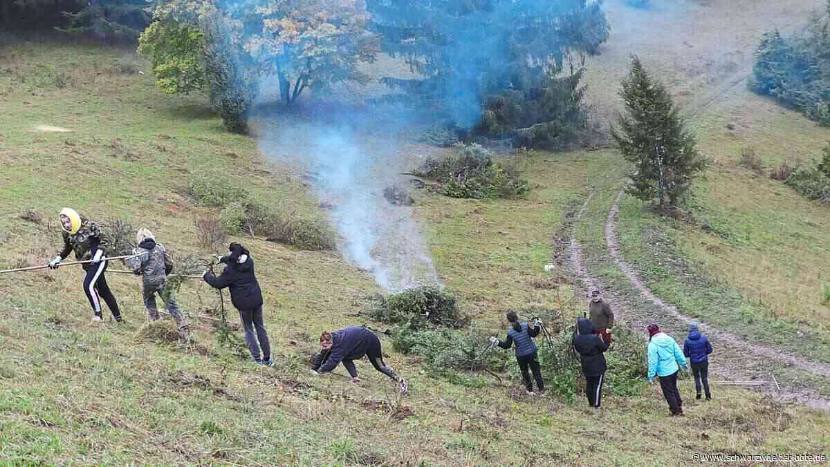 Burladingen: Haus Nazareth unterstützt bei Naturpflege - Burladingen - Schwarzwälder Bote