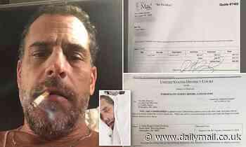 Documents 'show Hunter Biden's signature on Delaware computer repair shop receipt'