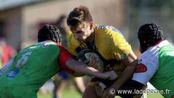 La Salvetat-Saint-Gilles. Rugby honneur : La Salvetat, c'est plus musclé - LaDepeche.fr