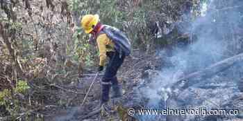 Incendio forestal tiene en emergencia a Carmen de Apicalá y Cunday - El Nuevo Dia (Colombia)