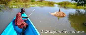 «À la vitesse du vent», les lacs kényans atteignent des niveaux alarmants