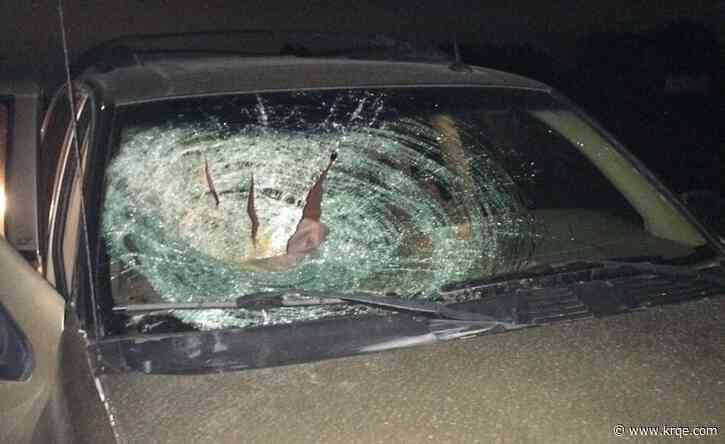 'I was so scared': Pumpkin thrown off overpass smashes through student's windshield