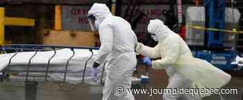 300 000 morts supplémentaires aux États-Unis pendant la pandémie