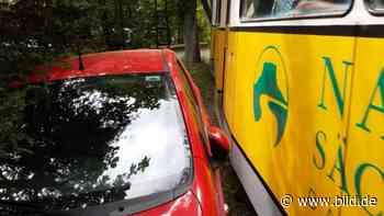 Sächsische Schweiz: Autoverbot im Kirnitzschtal - BILD