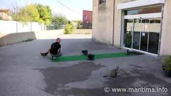 Martigues - Coronavirus - Pour les salles de sport, c'est couvre-feu toute la journée - Maritima.info