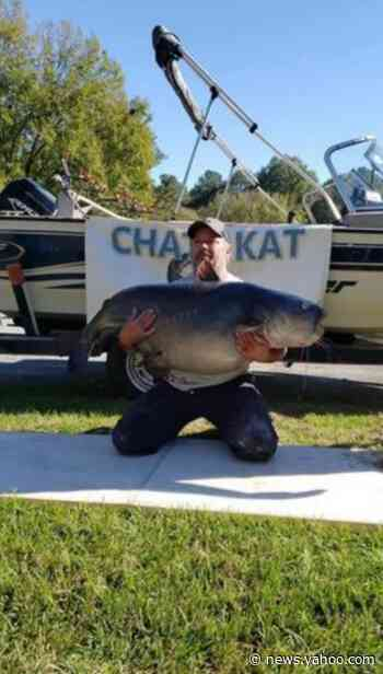 Record-setting catch of 110-pound catfish in Georgia has angler under fire. Here's why