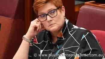 Minister backs warning on foreign meddling - Blue Mountains Gazette