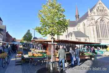 Paderborn: Streit um Wochenmarkt vom Tisch