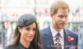 Meghan Markle and Prince Harry 'following their principles' as strategy divides experts