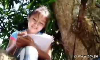 San Martín: Niña de 9 años trepa árbol para poder estudiar - ATV.pe