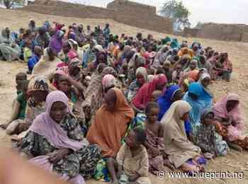 Borno c'ttee distributes food items to 1000 Kawuri IDPs - Blueprint newspapers Limited