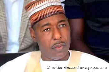 Borno palliatives committee distributes food items again to 1000 IDP households in Kawuri - National Accord