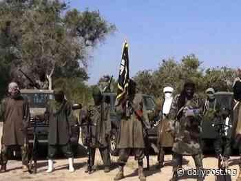 Boko Haram: Terrorists intercept over 10 vehicles, abduct travelers in Borno - Daily Post Nigeria