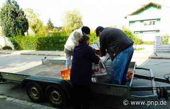 Kartoffelaktion vor dem Tafelladen – Mitarbeiter gesucht - Trostberg - Passauer Neue Presse