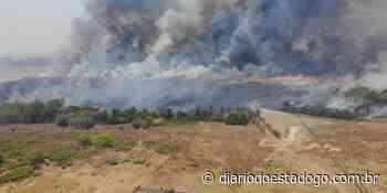 ICMBio informa declara não retardante de fogo na APA de Pouso Alto - Diário do Estado