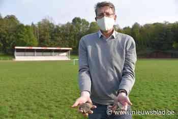 """""""Glas, stenen, stukken metaal: grasveld Adriaansstadion is e... (Geraardsbergen) - Het Nieuwsblad"""