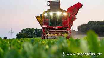 Umweltverbände kritisieren EU-Agrarreform scharf