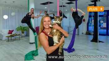 Pole-Dance-Kater Pauli räkelt sich in Kaufering