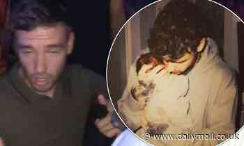 Liam Payne 'has quit drinking amid fears it will ruin relationship with son Bear' - Daily Mail