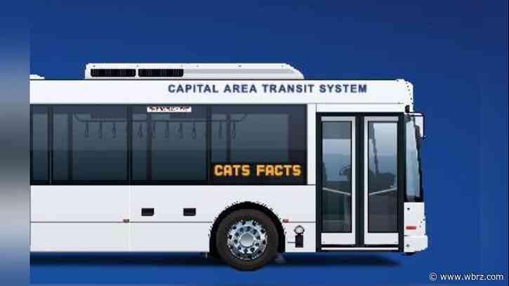 CATS: Changes to Route 11 result in seven canceled stops Wednesday