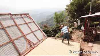 Revisan medidas de bioseguridad en Abejorral - Telemedellín