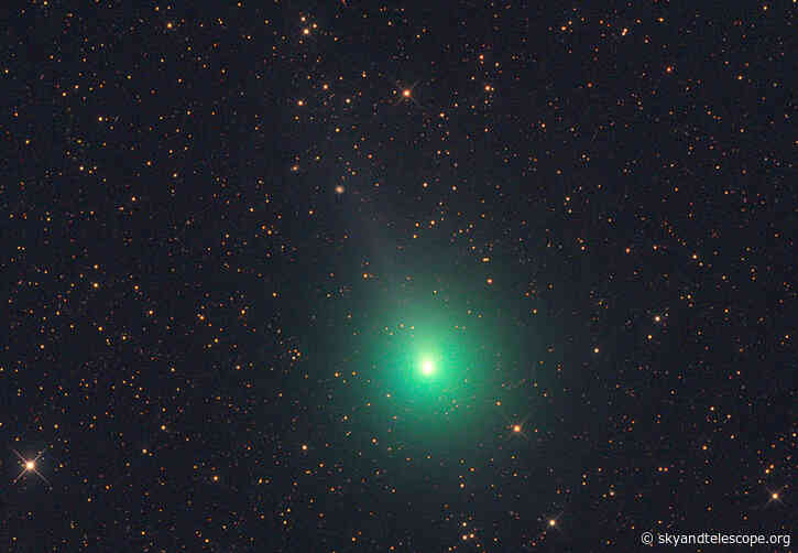 Comets Crawl through the Skies at Dawn and Dusk