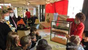 Plus de 1 000 visiteurs accueillis au village des sciences de Gramat - ladepeche.fr
