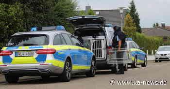 A8: 43-Jähriger löst Großeinsatz der Polizei aus - ka-news.de