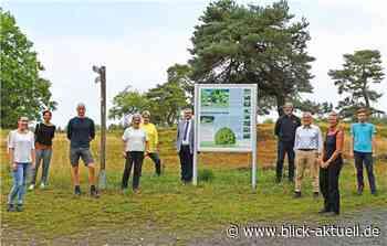 Erfolgsgeschichte Blumenrather Heide trägt Früchte - Blick aktuell
