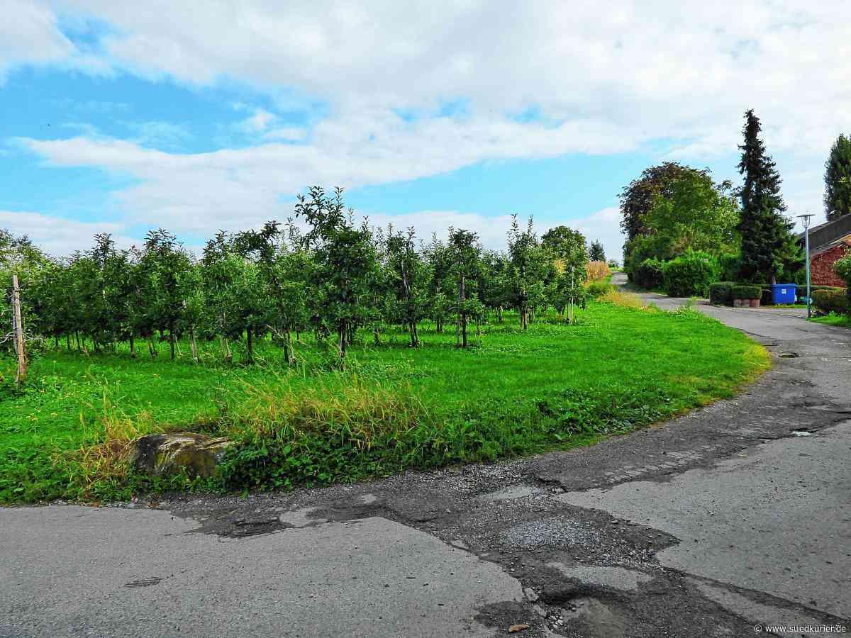 """Markdorf: Ortschaftsrat Riedheim stimmt für den Entwurf des Bebauungsplans """"Torkelhalden"""" - SÜDKURIER Online"""
