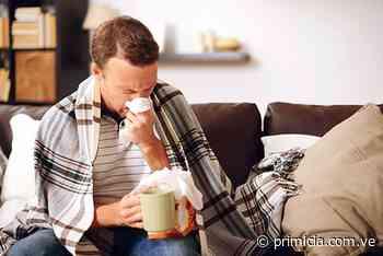 7 remedios caseros para combatir la rinitis alérgica - primicia.com.ve
