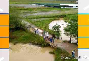 Más de 14 veredas incomunicadas por colapso de puente en Yalí - Telemedellín