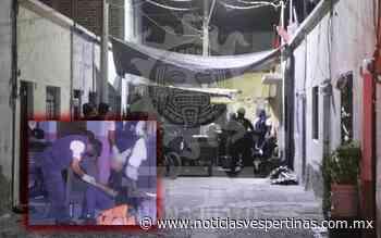 Muerde perro a ladrones en la colonia San Nicolás - Noticias Vespertinas