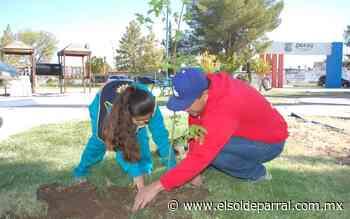Entregan más de 2,500 árboles para reforestar la ciudad de Delicias - El Sol de Parral