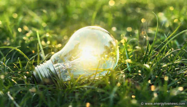 Bulb launches 'UK's first major 100% renewable smart prepayment tariff'