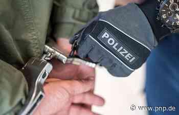 Vermeintliche Fernsehtechniker: Polizei nimmt drei Trickdiebe fest - Passauer Neue Presse