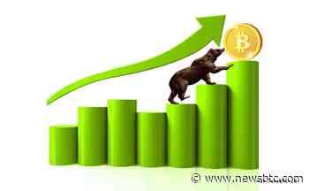 Bitcoin Gold Price Technical Analysis – BTG/USD Bears in Control - newsBTC