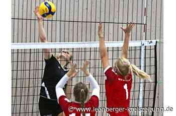 Volleyball bei der TSF Ditzingen: Der Spitzenreiter denkt nur an den Klassenerhalt - Leonberger Kreiszeitung