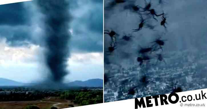 Arachnado – a film about spiders in a tornado – is here which makes Sharknado look positively Oscar-worthy