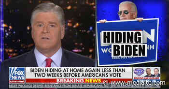 Hannity Says Americans Should 'Demand a Full Physical and Cognitive Assessment' of Joe Biden - Mediaite